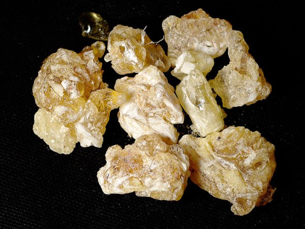Frankincense from Yemen (photo from Wikimedia Commons)