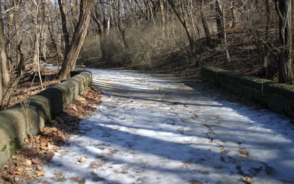 Icy trail in Schenley Park, 22 Feb 2014 (photo by Kate St. John)