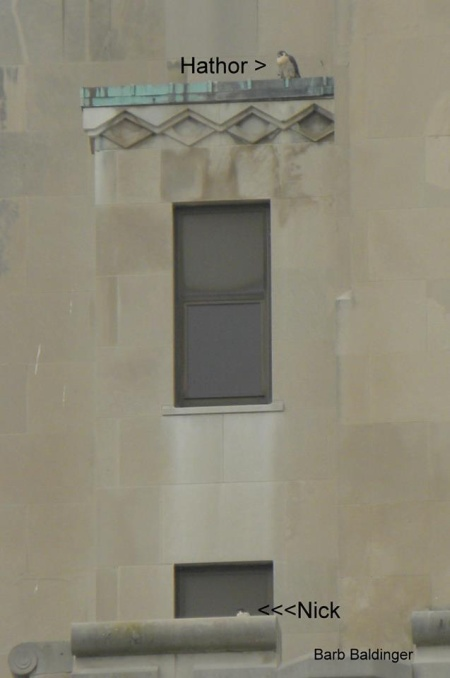 Hathor at Macomb County Courthouse (photo by Barb Baldinger)