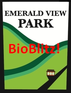 Emerald View Bio Blitz (logo modified from Mt. Washington Community Development Corporation)