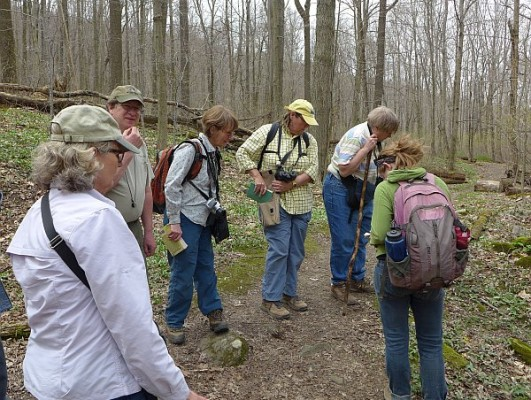 Wissahickon/Botanical Society outing to Linn Runn State Park, 19 April 2015 (photo by Kate St. John)